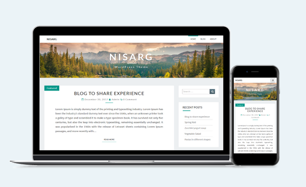 Nissarg - Free Responsive WordPress Blog Theme