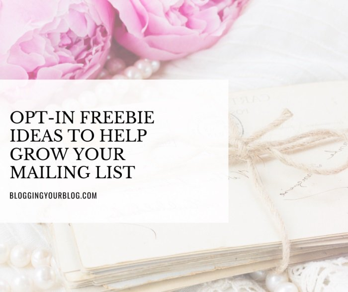 Opt-In Freebie Ideas to Help Grow Your Mailing List